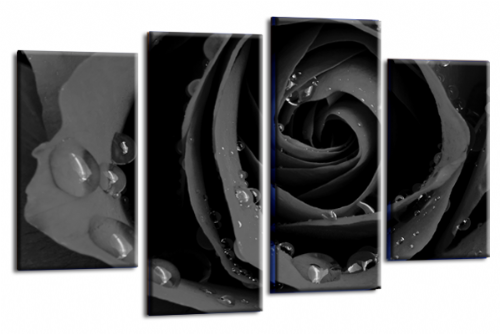 Flower Rose Wall Art Floral Picture Print Grey Black White